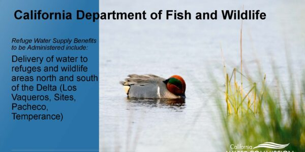CWC WSIP Update PPT_Page_12