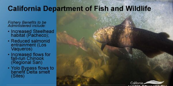 CWC WSIP Update PPT_Page_13