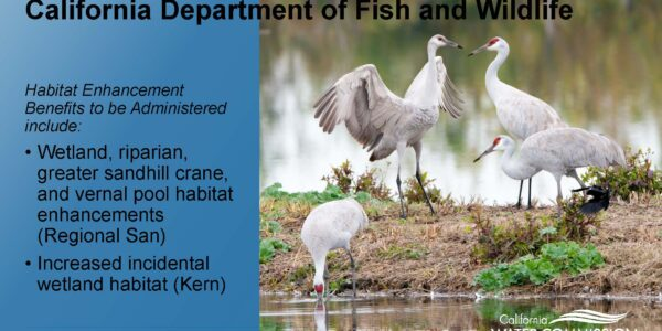 CWC WSIP Update PPT_Page_15